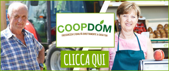 CD-PARTner_logo_coopdom