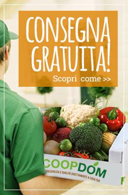 CD-BANNER-CONSEGNA-GRATUITA