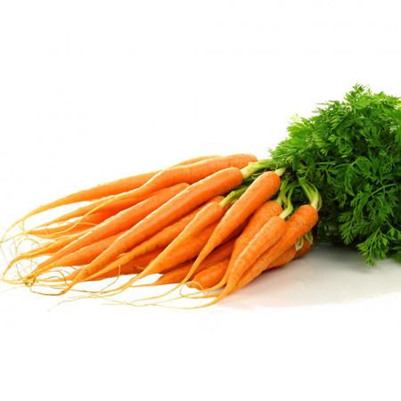 carote 2