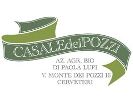 Logo Casal dei pozzi