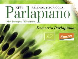 Parlapiano 600-450