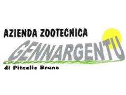 Logo gennargentu